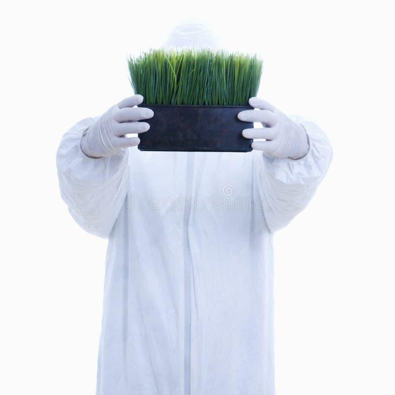 белизна костюма человека травы стоковые фотографии rf