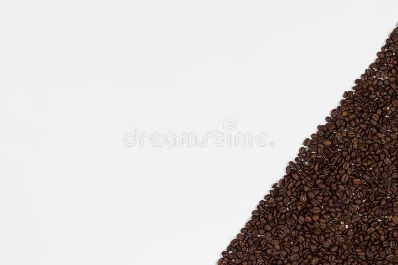 белизна кофе фасолей предпосылки Взгляд сверху с космосом для вашего t стоковое фото