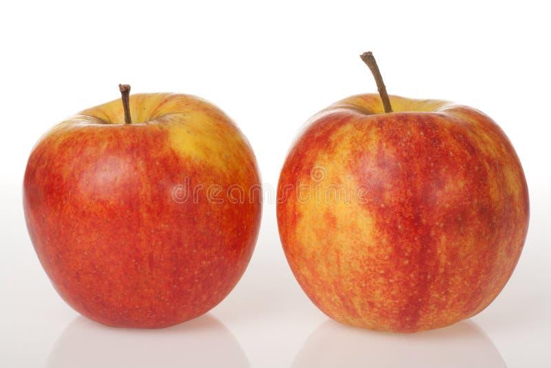 белизна красного цвета 2 предпосылки яблок стоковое изображение
