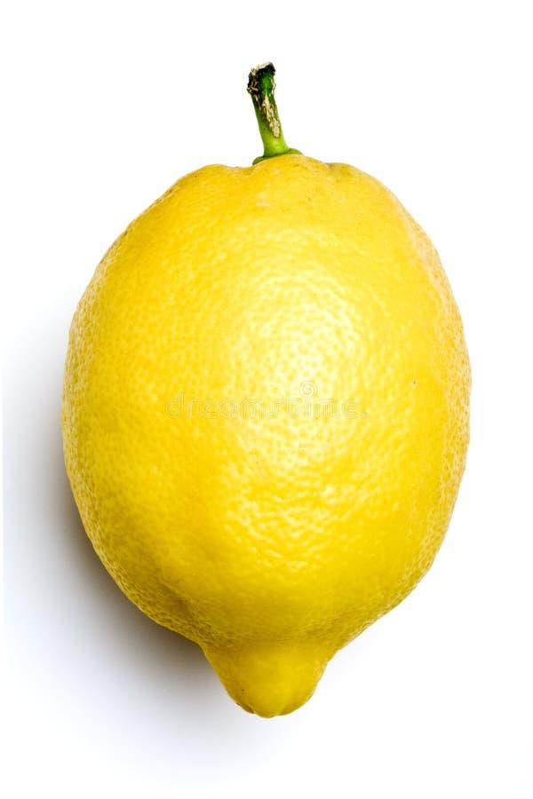 белизна лимона стоковое изображение