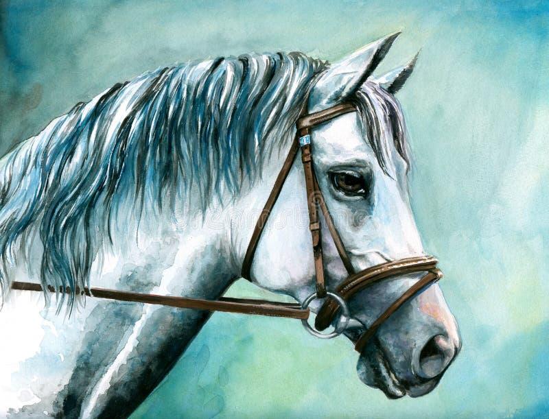 белизна лошади бесплатная иллюстрация