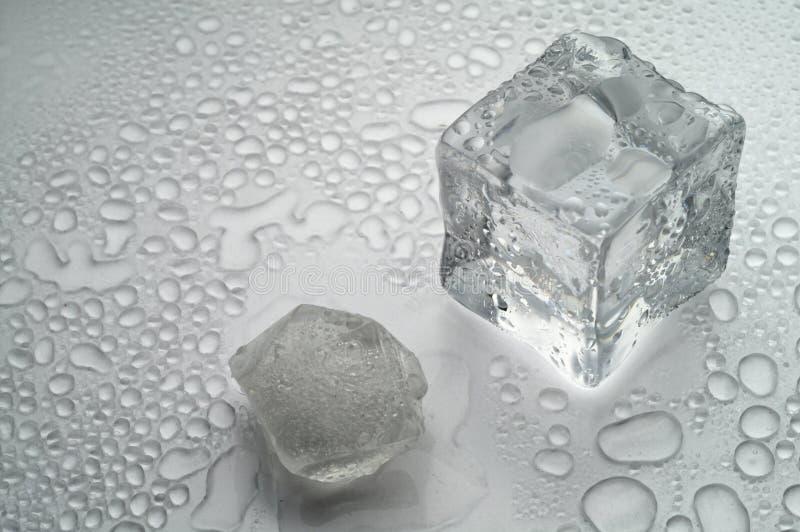 белизна льда плавя стоковые фото