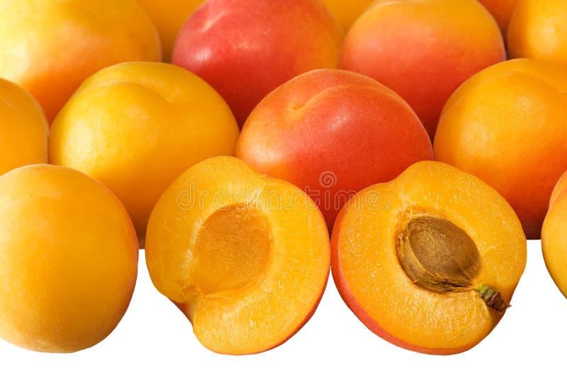 белизна предпосылки абрикосов зрелая стоковая фотография rf