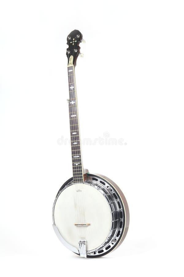 белизна предпосылки изолированная банджо стоковое фото