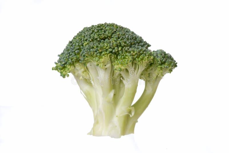 белизна предпосылки изолированная brocolli стоковое фото rf