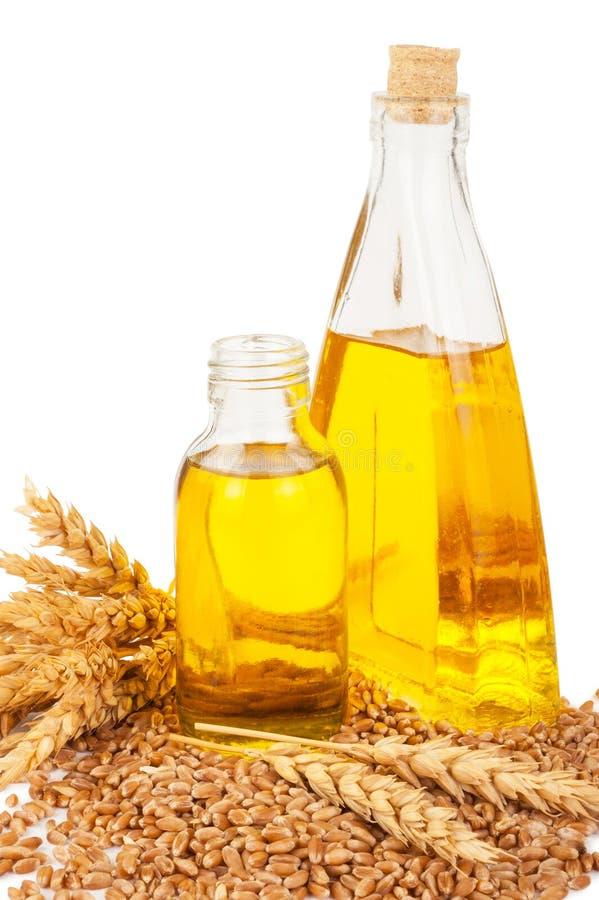 белизна пшеницы масла иллюстрации семенозачатка падения предпосылки стилизованная стоковые фотографии rf