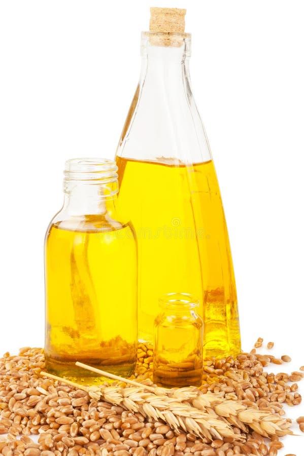 белизна пшеницы масла иллюстрации семенозачатка падения предпосылки стилизованная стоковое фото