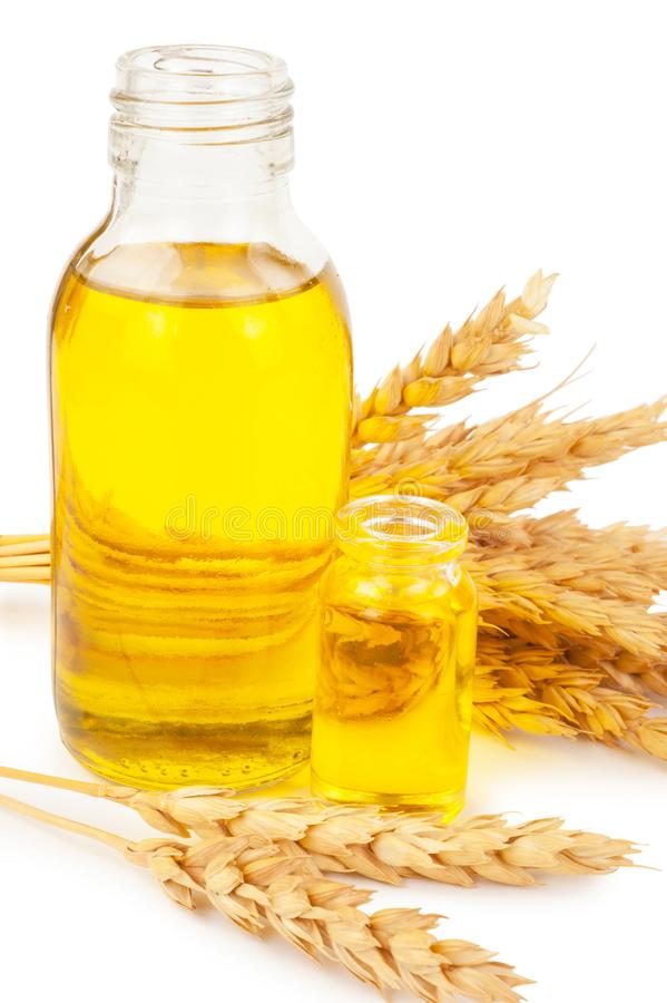 белизна пшеницы масла иллюстрации семенозачатка падения предпосылки стилизованная стоковая фотография rf