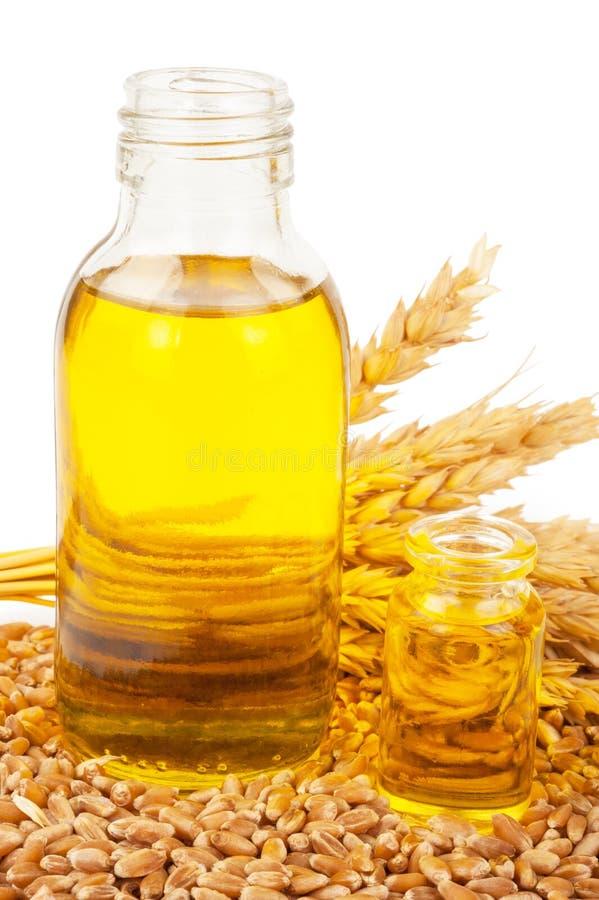 белизна пшеницы масла иллюстрации семенозачатка падения предпосылки стилизованная стоковые фото