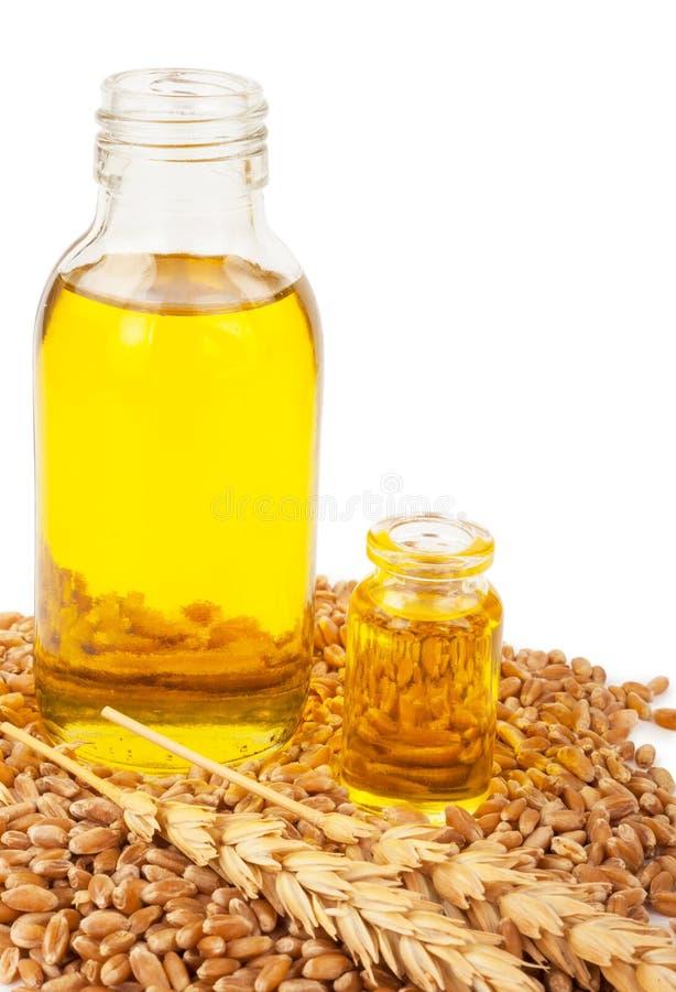белизна пшеницы масла иллюстрации семенозачатка падения предпосылки стилизованная стоковое фото rf
