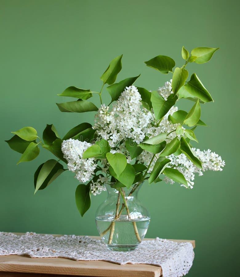белизна сирени Букет цветя ветвей в вазе стоковая фотография