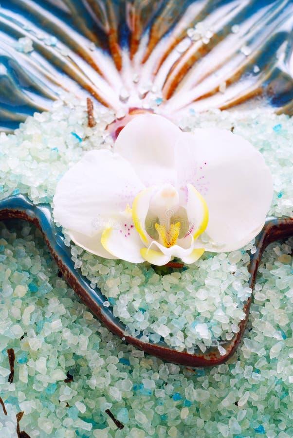 белизна соли орхидеи цветка ванны стоковое изображение rf