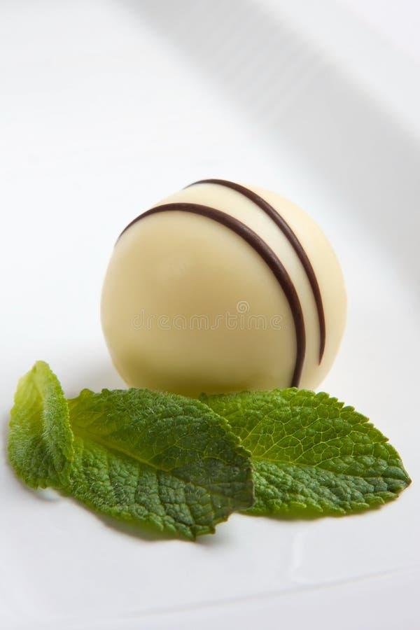 белизна трюфеля шоколада Стоковые Фотографии RF