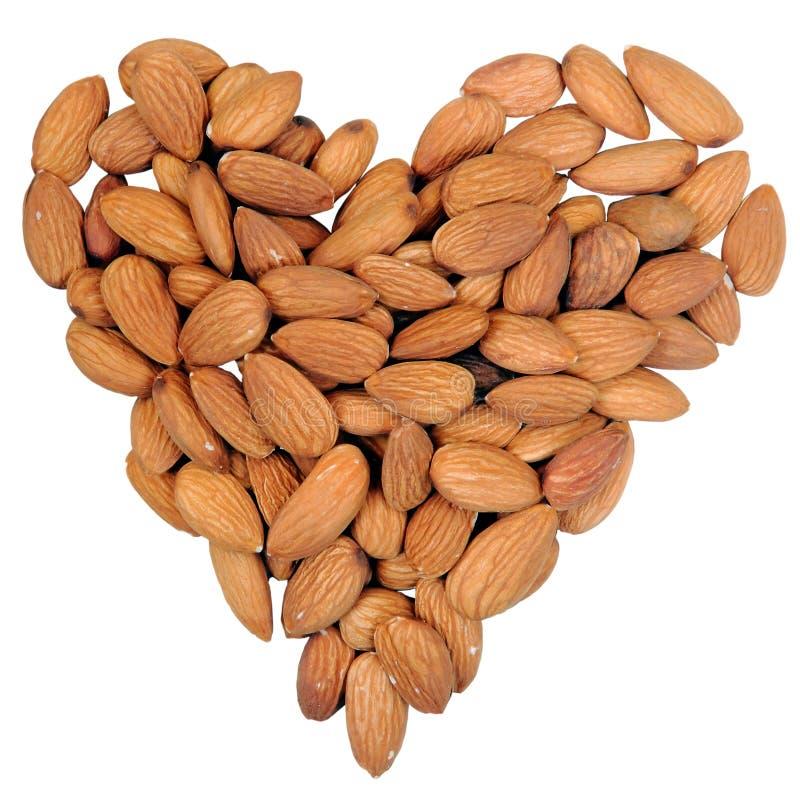 белизна формы миндалин изолированная сердцем nuts стоковые фотографии rf