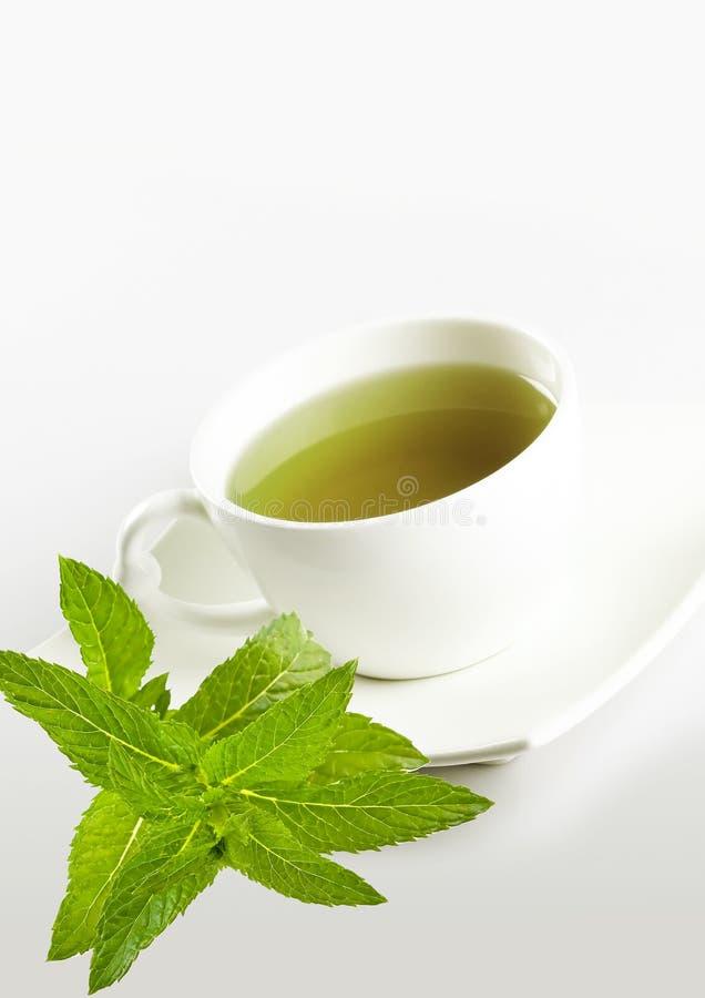 белизна чая мяты чашки стоковые фотографии rf