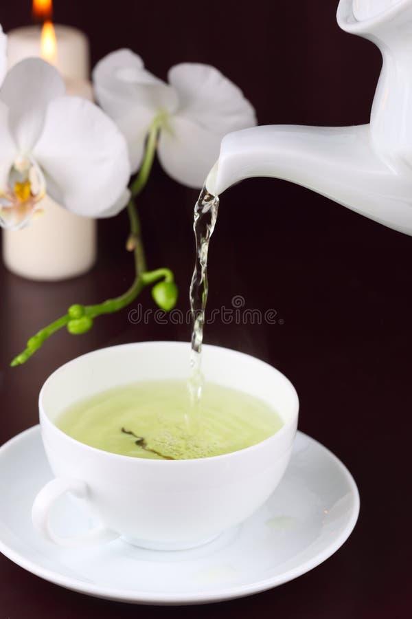 белизна чая орхидеи чашки зеленая стоковая фотография rf