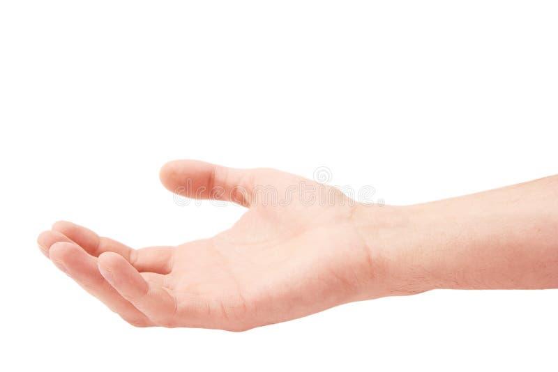 белизна человека руки предпосылки стоковая фотография