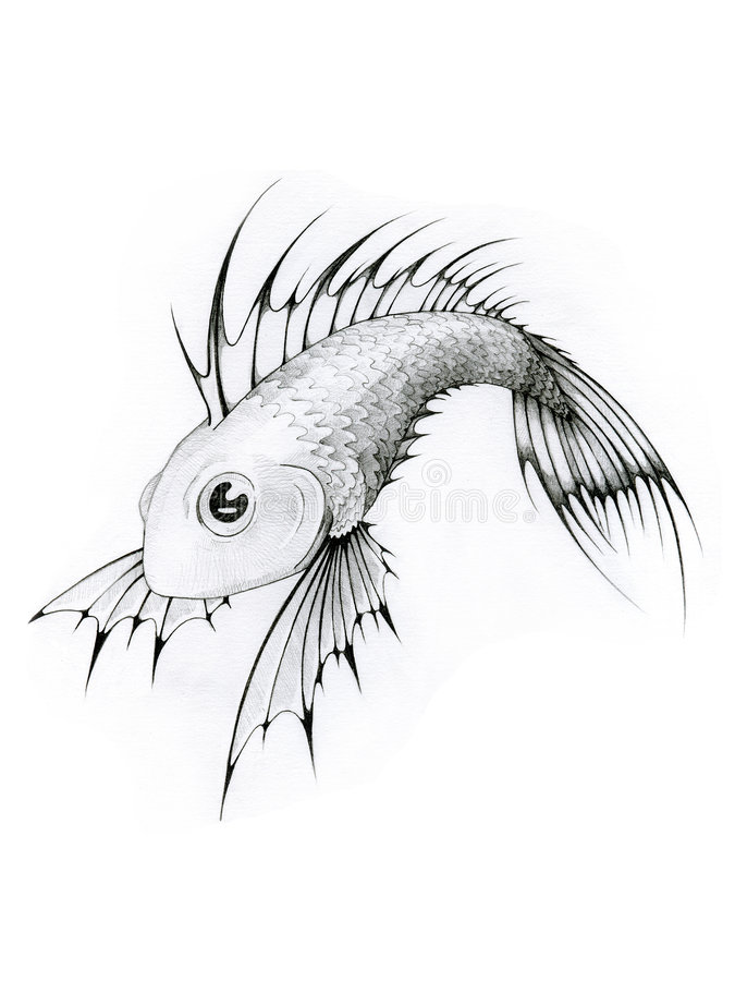 белизна черных рыб тропическая стоковое изображение rf