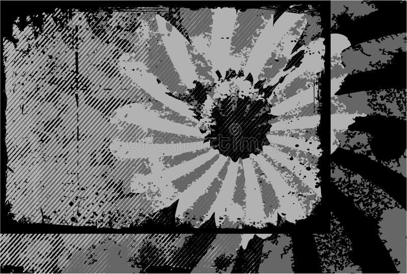 белизна grunge предпосылки черная бесплатная иллюстрация