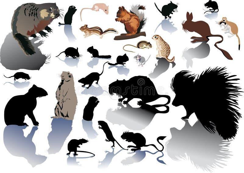 белизна rodentson установленная бесплатная иллюстрация