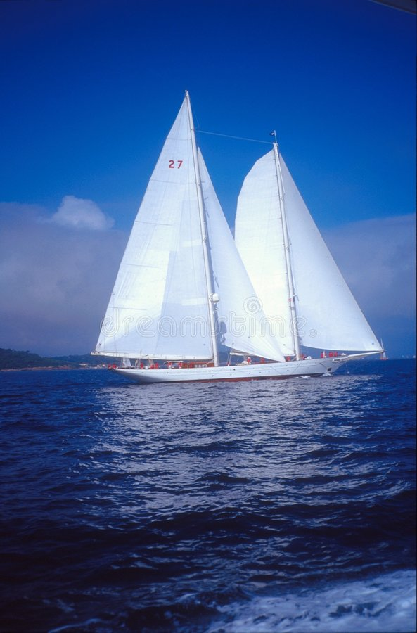 белизна sailing шлюпки стоковая фотография