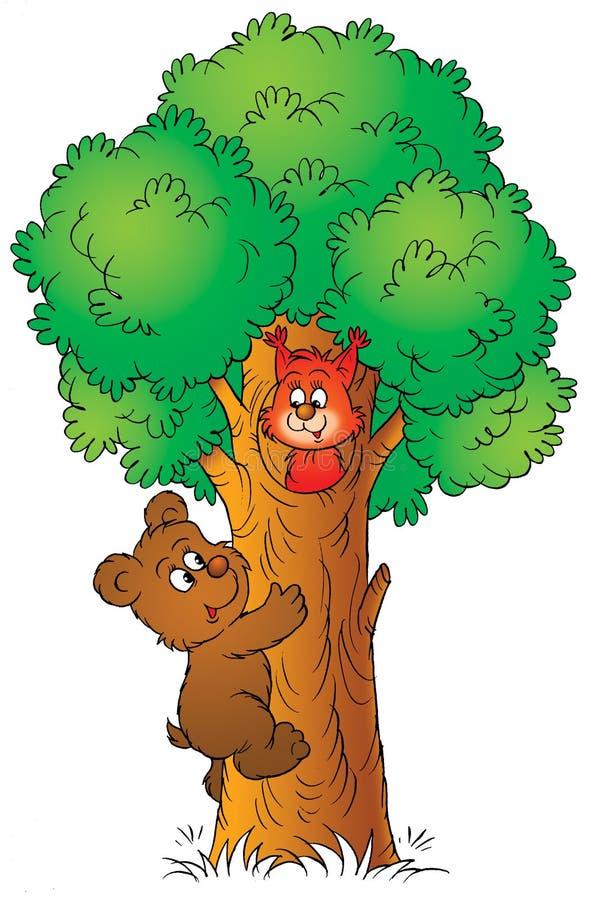 белка медведя иллюстрация вектора