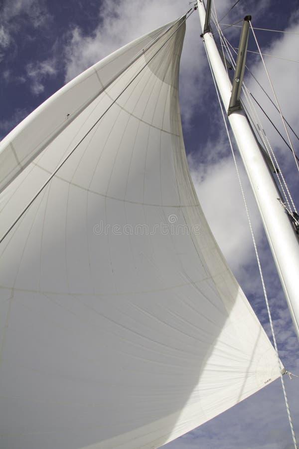 Белое ветрило стоковая фотография rf