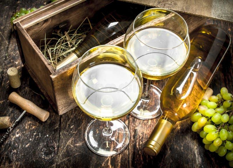 Белое вино в стеклах стоковые изображения