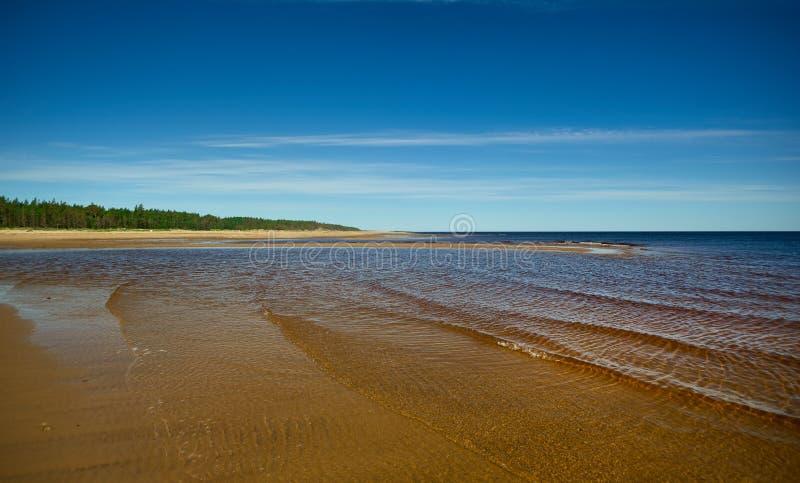 Белое море стоковое изображение rf