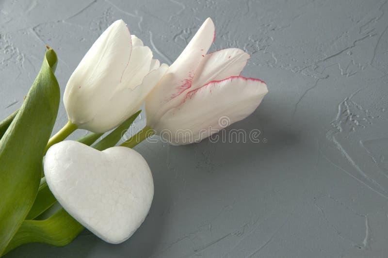 Белое сердце стоковая фотография rf