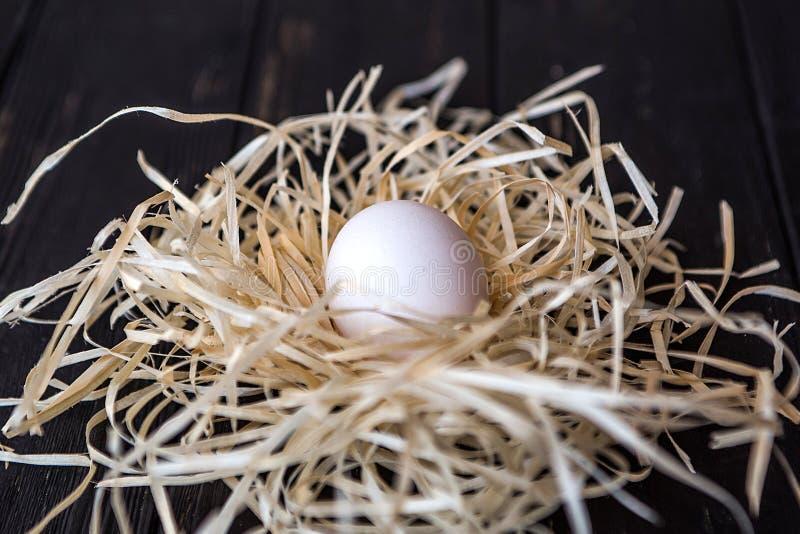 Белое яичко в гнезде соломы на черном деревянном desc стоковое изображение