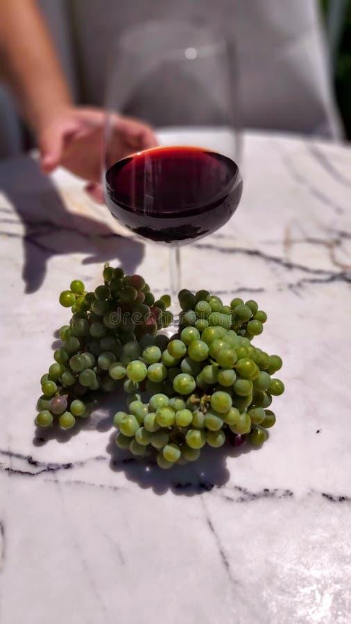 Белокурая девушка во дворе вина Стекло красной лозы стоковые изображения