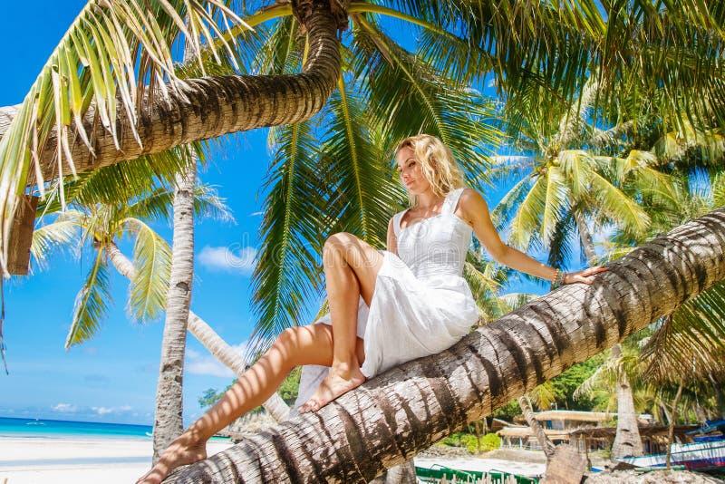Белокурая невеста на coconutpalm Свадьба и медовый месяц на trop стоковая фотография