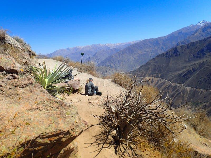 Белокурый путешественник женщины идет вдоль каньона Colca в Chivay, Перу, Южной Америке Кондоры могут быть увиденным летанием сре стоковое фото rf