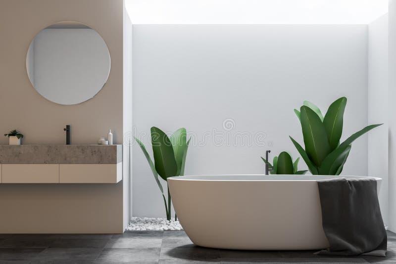 Белые большие ванная комната просторной квартиры, ушат и вид спереди раковины бесплатная иллюстрация