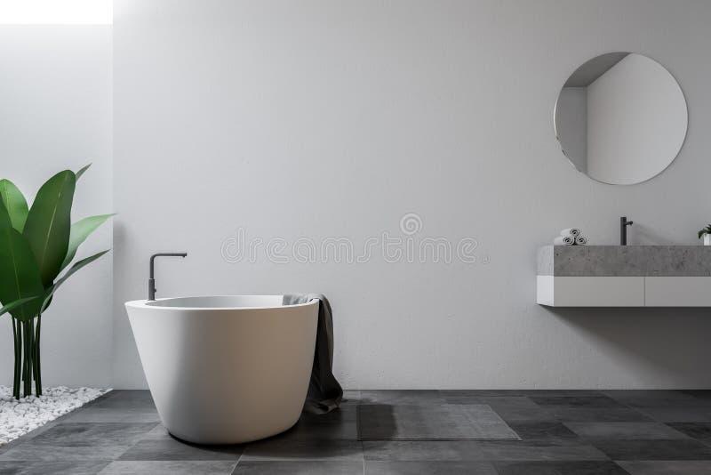 Белые большие ванная комната, ушат и раковина просторной квартиры бесплатная иллюстрация