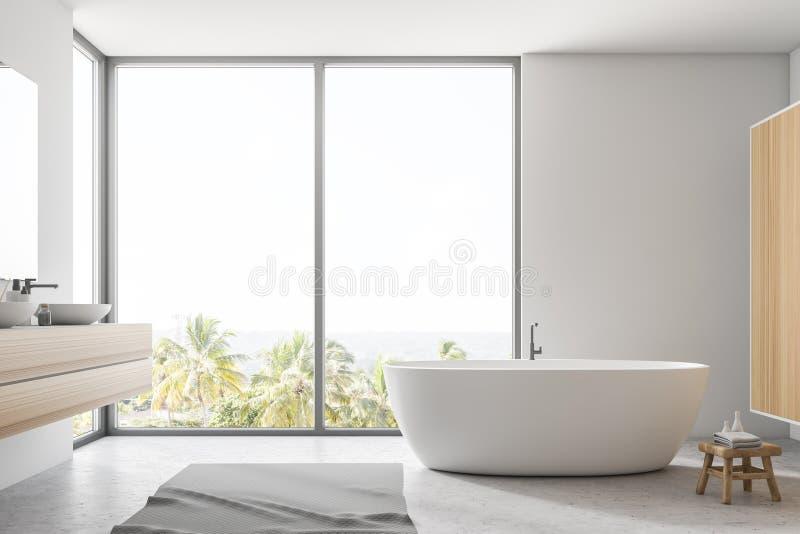 Белые интерьер, ушат и раковина ванной комнаты иллюстрация вектора