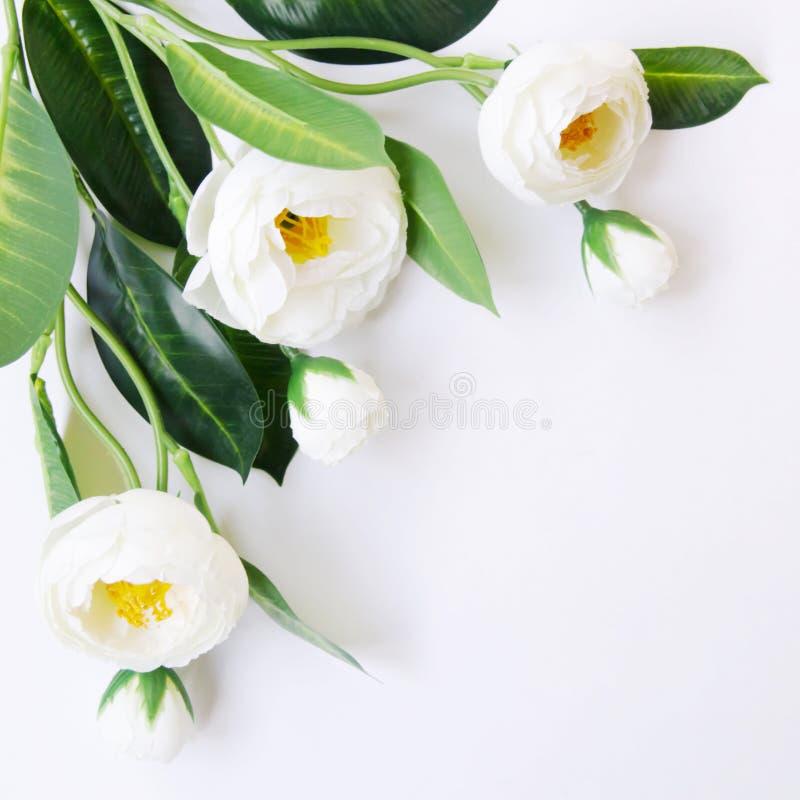 Белые искусственные цветки на белой предпосылке стоковые фотографии rf