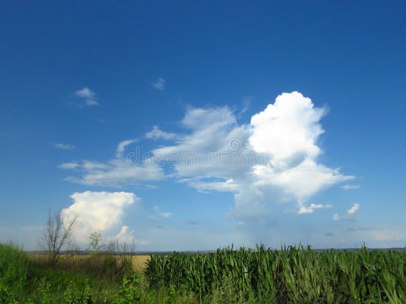 Белые и серые облака в голубом небе Бурный дождливый прогноз погоды стоковое изображение rf