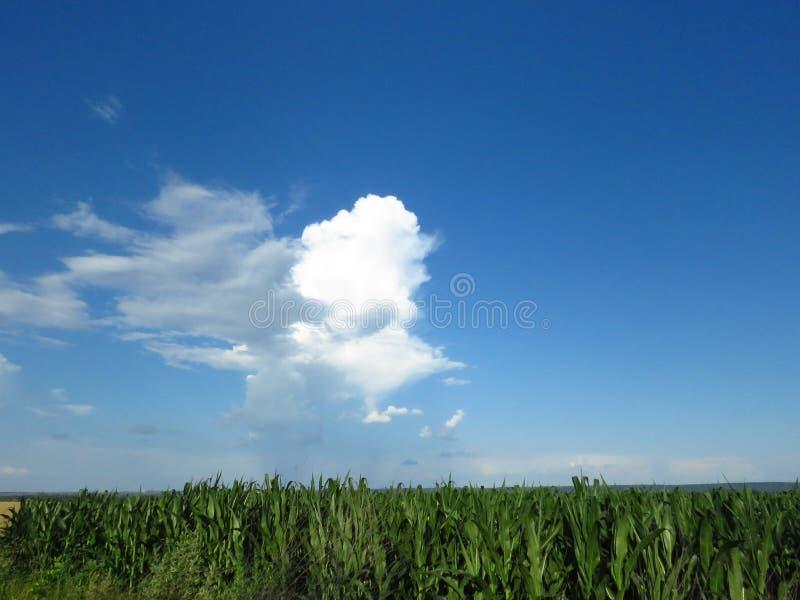 Белые и серые облака в голубом небе Бурный дождливый прогноз погоды стоковое изображение
