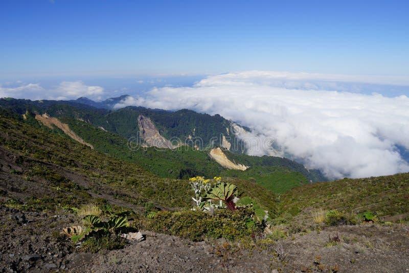 Белые облака над долиной под вулканом Irazu, провинцией Cartago, Коста-Рика стоковые фотографии rf