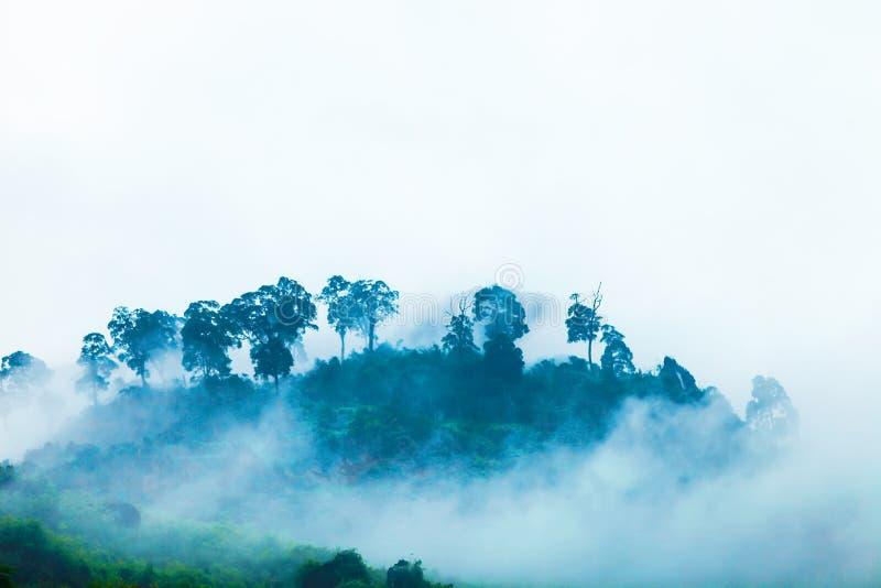 Белые облака покрывают горы скалистое глобальное Geopark в Ha Giang, Вьетнаме стоковые изображения