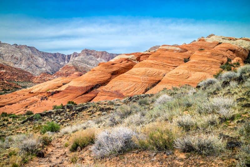 Белые песчаники Навахо в парке штата каньона снега, Юте стоковое фото