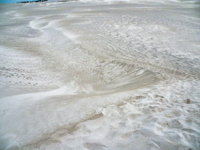 Белые песчанные дюны, Lancelin, западная Австралия стоковое изображение rf