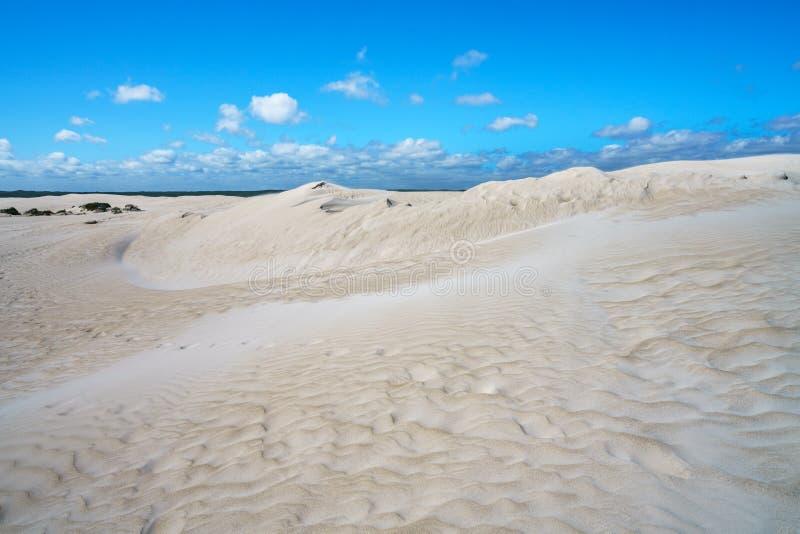 Белые песчанные дюны lancelin, западная Австралия 10 стоковая фотография