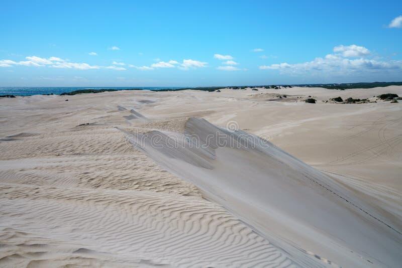 Белые песчанные дюны lancelin, западная Австралия 15 стоковая фотография