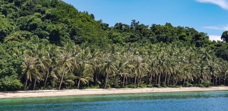 Белые песчаные пляжи выровнянные с кокосовыми пальмами в Филиппинах стоковое фото