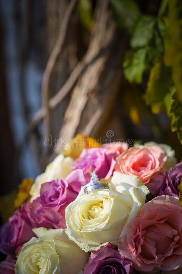 Белые серебряные обручальные кольца на букете пинка и белых роз Листья в предпосылке стоковые фото