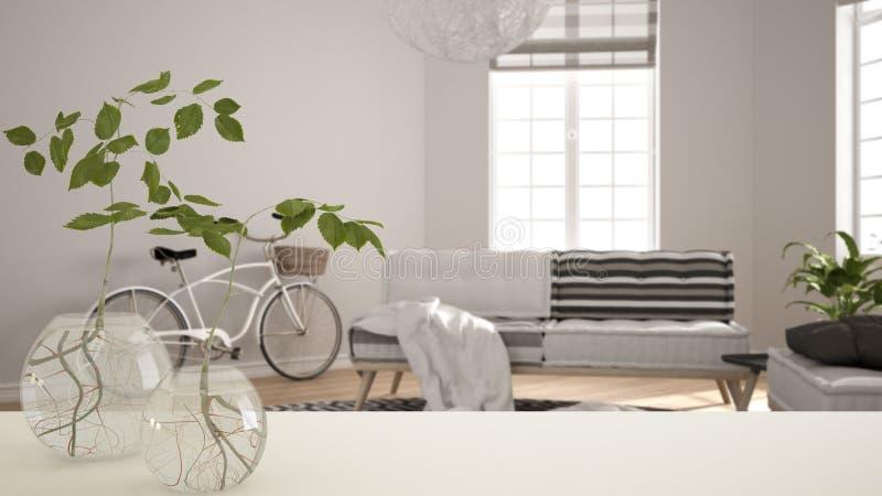 Белые столешница или полка со стеклянной вазой с hydroponic заводом, орнаментом, корнем завода в воде, ветви в вазе, заводе дома, стоковая фотография rf