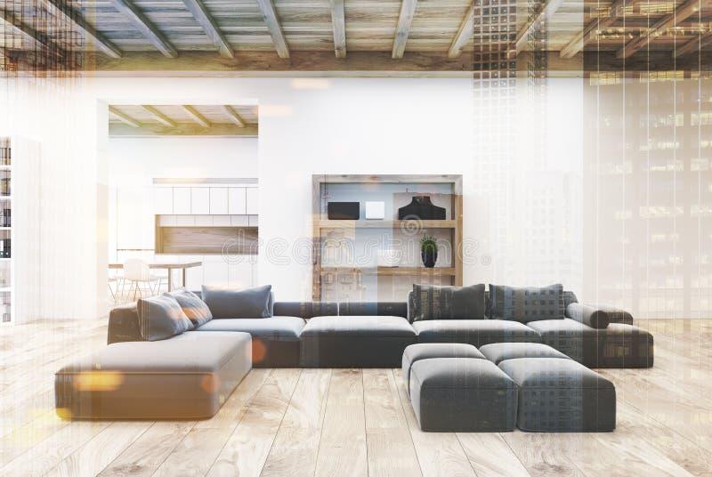 Белые тонизированные софы живущей комнаты серые бесплатная иллюстрация